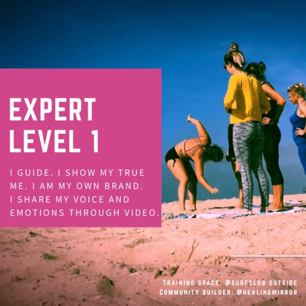 Expert Level 1